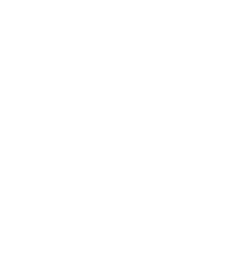 The Hague Street Art